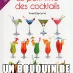 ceci n'est pas un livre de cocktail