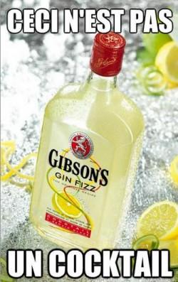 gibsons_gin_fizz