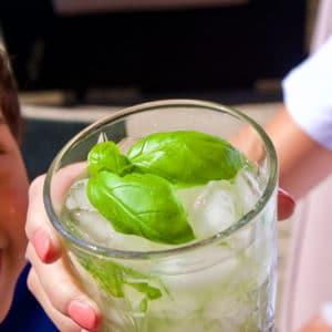 Un Gin Basil Smash décoré d'une feuille de basilic