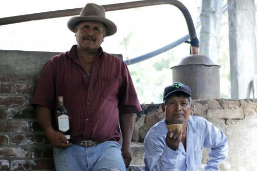 Mezcal-producteurs-mexique