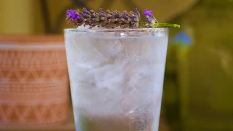 Gros plan sur le magnifique garnish lavande de ce gin & tonic