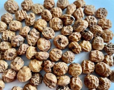 Des noix de souchet